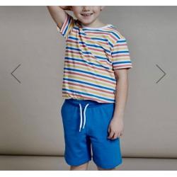 PRIMARK Shorts, Flat Front Jogger Short, Blue Colour