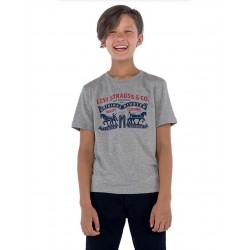 Levi's T-Shirt, For Kid's, Short Sleeves with Modern Print
