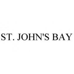 ST.JOHN'S BAY Blouse, V-neck Blouse in Modern Design