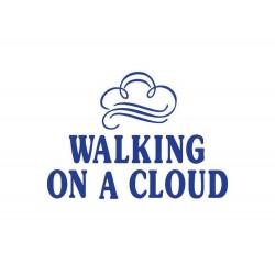 WALKING ON A CLOUD Slipper