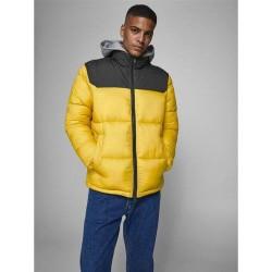 Jack & Jones Jacket, Puffer Jacket with Hood
